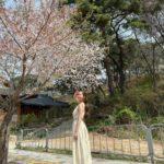 "<span class=""title"">女優パク・ミニョン、桜の花の下で輝く春の女神</span>"
