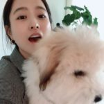 "<span class=""title"">女優パク・ボヨン、愛犬と一緒に明るい笑顔</span>"